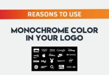 resons to use monocrome color in logo