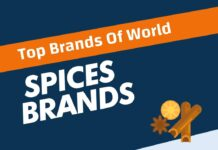 Best Spices Brands in the World