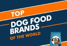Dog Food brands in the world