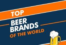 Beer Brands in the World
