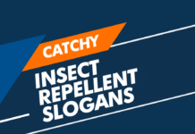 insect repellent slogans
