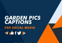Garden Pics Captions